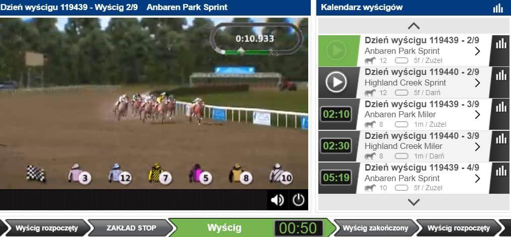 wirtualne sporty co można obstawiać